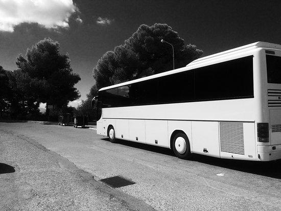 Triada Travel
