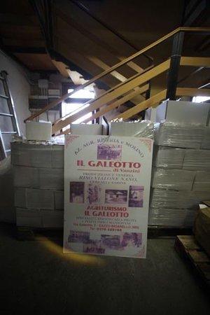 Gazzo, Italia: location e cucina del territorio piacevole e gradita !|