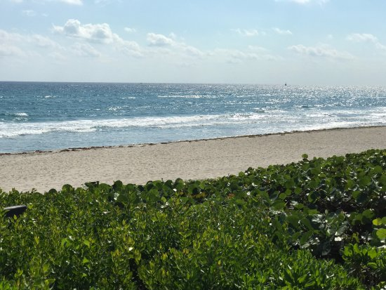 Lake Worth Beach: photo0.jpg