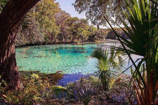 The crystal clear waters of Silver Glen in Ocala/Marion County