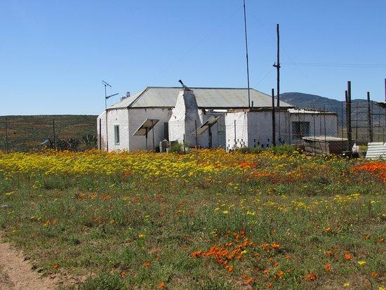 Garies, Sudáfrica: Mostertsvlei Farm