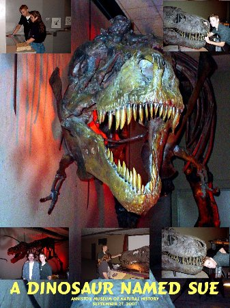 Anniston Museum of Natural History - A Dinosaur Exhibit