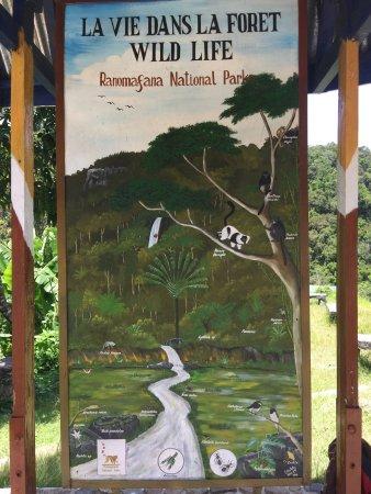 Fianarantsoa Province