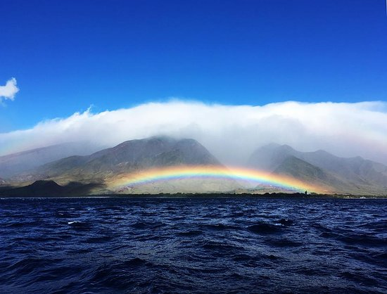 Maalaea, Χαβάη: In addition to seeing Humpback whales we also Had this to look at the whole time on that side of