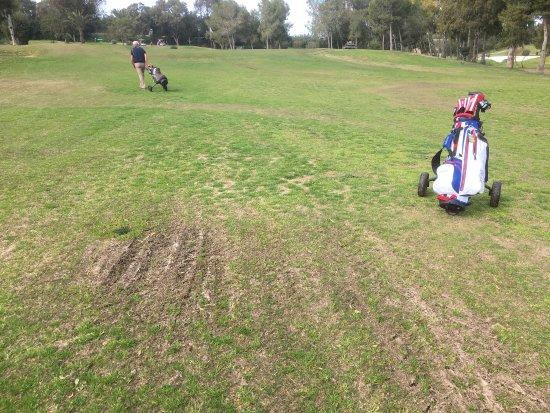 Golf Yasmine : Der Platz ist im Moment im nicht zu empfehlen, sehr schlechter Pflegezustand! Im Moment sollte m