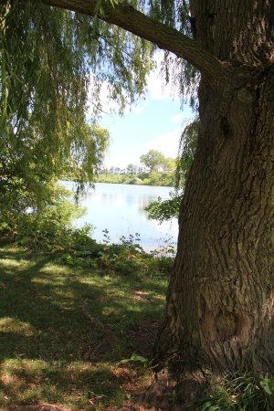St. Catharines, Canada: Lovely