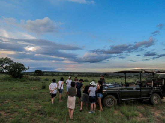 Welgevonden Game Reserve, Sydafrika: Sundowner in the bush