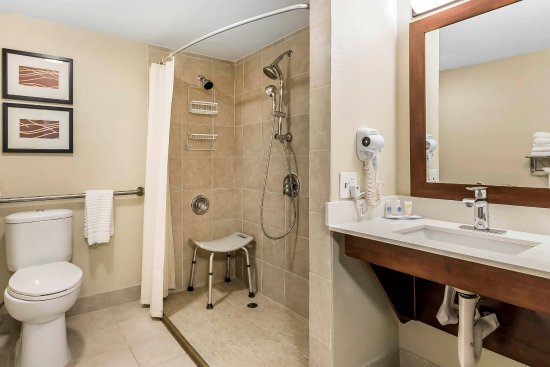 Comfort Inn Sunnyvale - Silicon Valley: Accessible Room with Roll-in-Shower