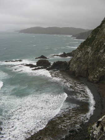 Balclutha, Nuova Zelanda: Nugget Point View