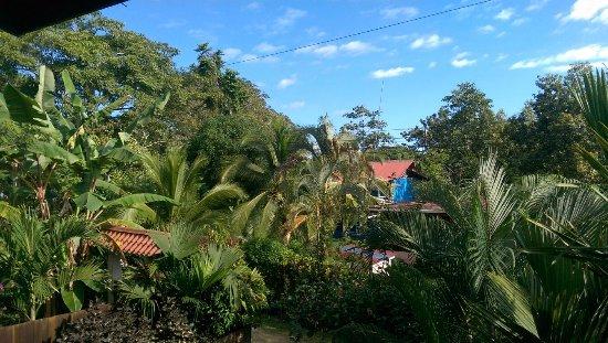 Coconut Love Beach House: panorama terrazza della colazione