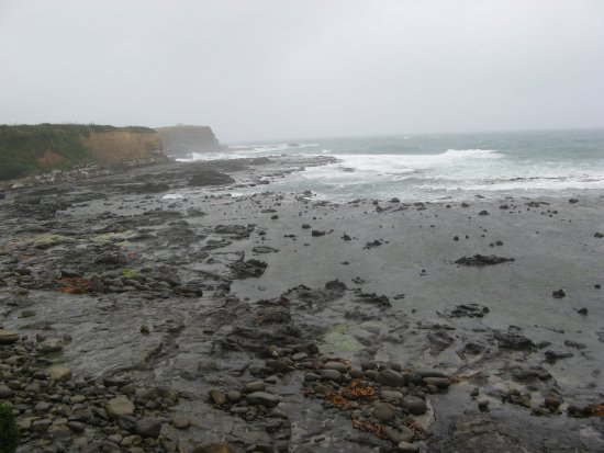 Waikawa, Nowa Zelandia: Curio Bay on a stormy day