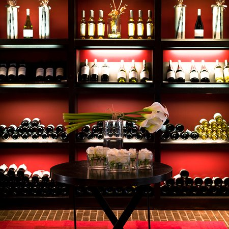 Tanino: Wine Shop