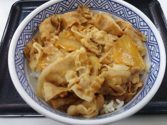 Abiko, Japan: 豚丼並盛