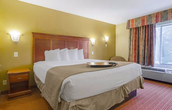 Quality Inn & Suites Medical Park: Room with 1 King Bed