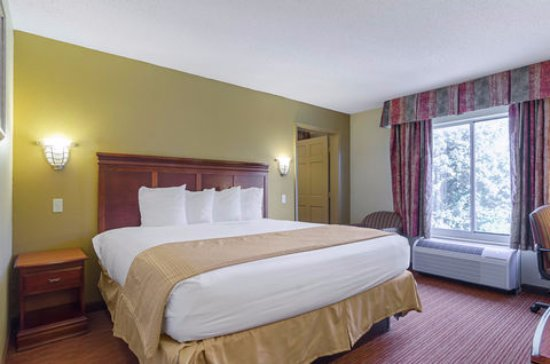 Quality Inn & Suites Medical Park : Suite Room with 1 King Bed