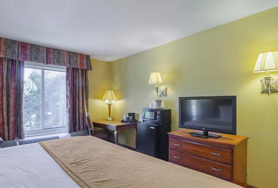 Quality Inn & Suites Medical Park : Room with 1 King Bed