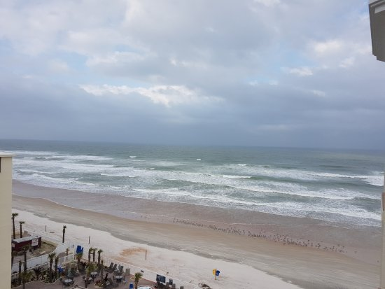 The Cove on Ormond Beach: 20170204_160439_large.jpg