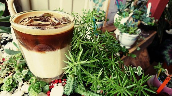 Flaxton, Australia: Iced Latte special with home-made slated caramel sauce