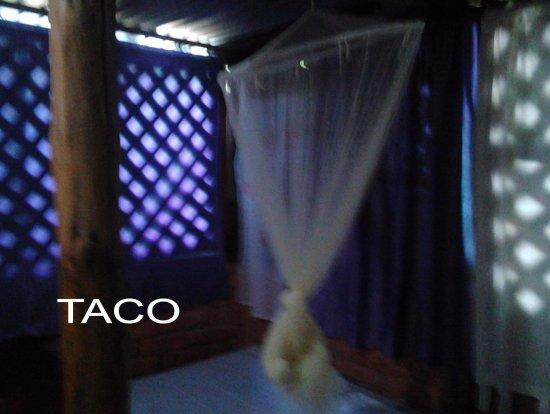Rivas, نيكاراجوا: Taco sleeper