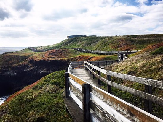 Phillip Island, Australia: The Nobbies Boardwalk