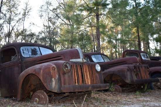 Crawfordville, FL: Tons of rust