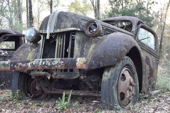 Crawfordville, FL: Old Timer