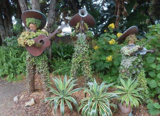 Encinitas, CA: Succulent Musicians