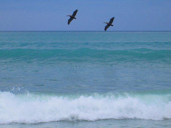 Indialantic, فلوريدا: Indialantic Beach