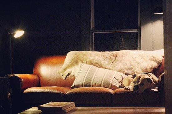 写真Audrey's Farmhouse Bed & Breakfast枚