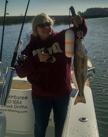 Isle of Palms, SC: Nice redfish on light tackle