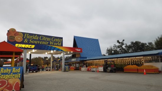 Florida Citrus Center and Souvenir World