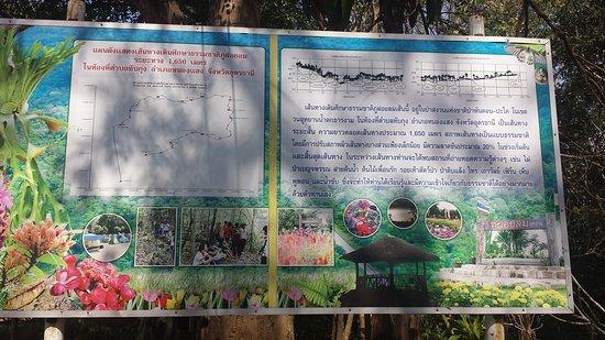 Provincie Udon Thani, Thailand: Lan Pi Phu Foi Lom National Park