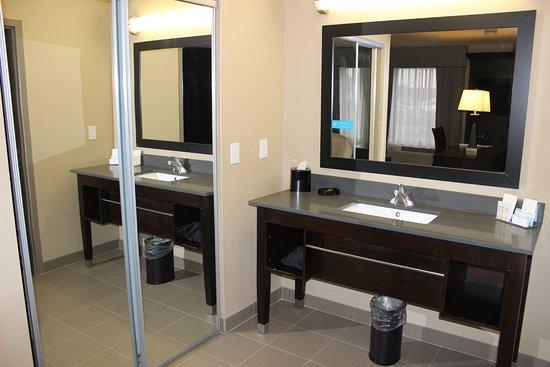 Hampton Inn & Suites Lansing West Photo