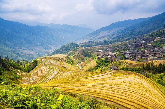 Longji Rice Terraces and Pingan...
