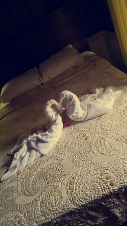 Hotel Arenal Montechiari: Swans left behind by the cleaning woman.