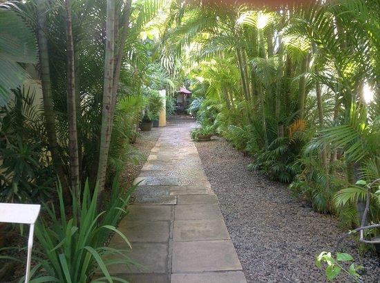 maison557: quiet garden path
