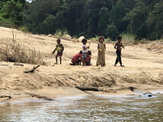 how to go to taman negara from kuala lumpur