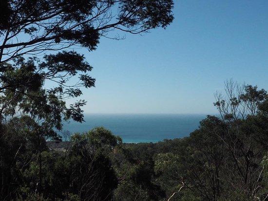 Cape Schanck, Australien: Bay view from Arthur's Seat