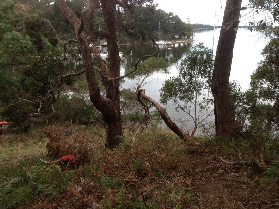 Paynesville, Australia: Views back down Newlands Arm from the track up towards Jones Road