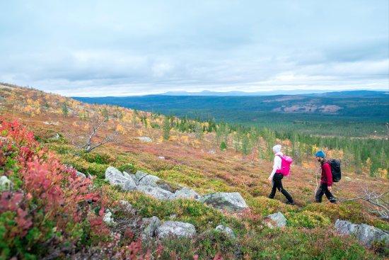 Sarna, Svezia: Hiking in the mountains, photo Simon Hamnelius