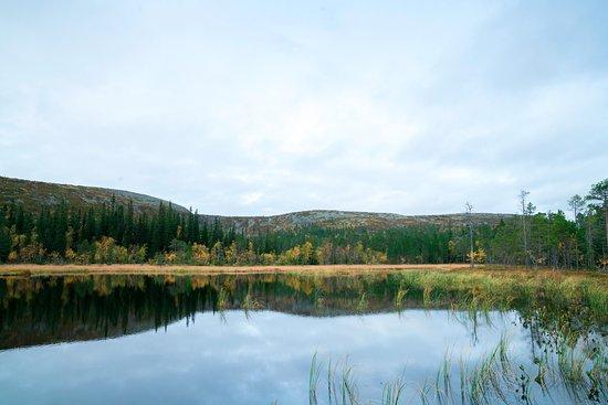 Sarna, Svezia: Peacefulness Photo Simon Hamnelius