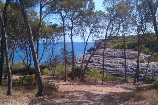 Parc Natural de Mondrago: A coastal walk