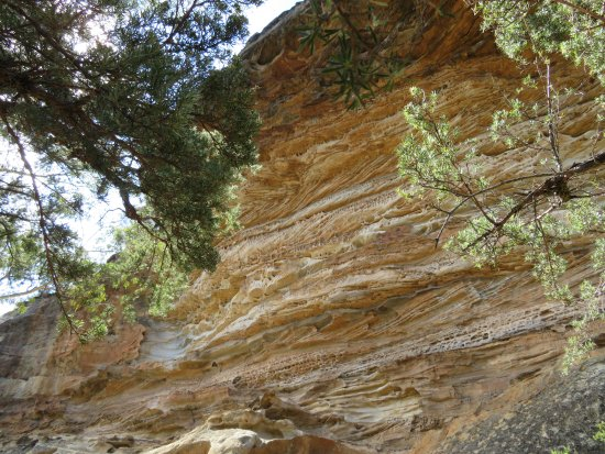 Blackheath, Australia: Rock Face