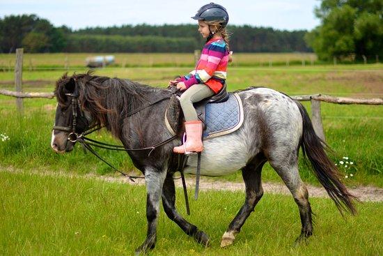 Gross Briesen, Niemcy: Kinder lernen bei uns behutsam und vertrauensvoll das Reiten.
