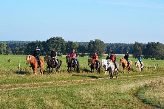Gross Briesen, Niemcy: Ausritte in den Naturpark Hoher Fläming an jedem Wochenende