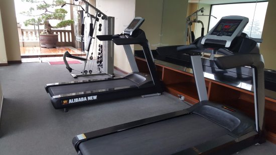 Imperial Hotel: The gym