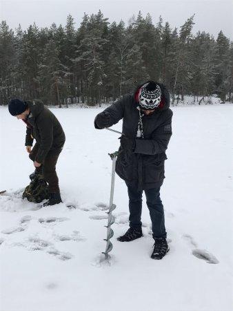 Finlande méridionale, Finlande : photo7.jpg