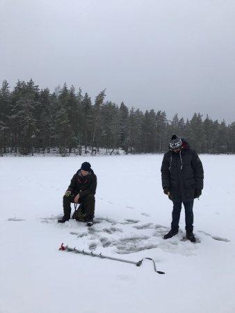 Finlande méridionale, Finlande : photo9.jpg