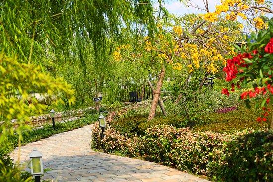 Landscape - Picture of The Golden Tusk, Dhela - Tripadvisor