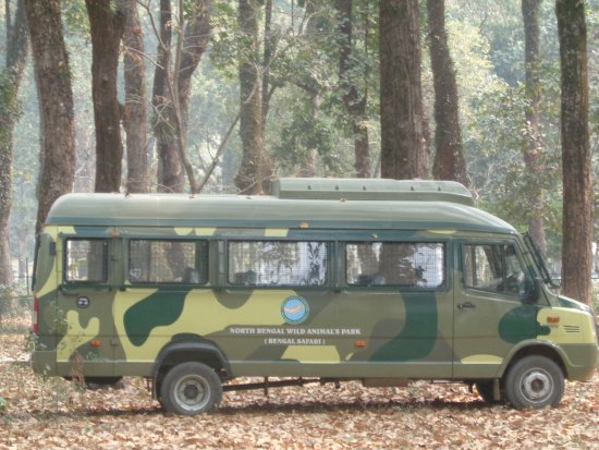Bengal Safari : North Bengal Wild Animals Park
